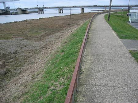 breydon clean up 2015 image 1